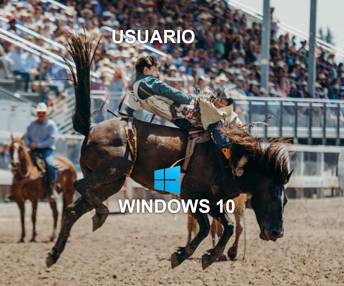 usuario-domando-a-windows-10